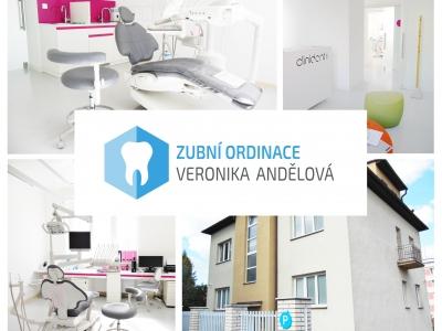 Zdravotní/zubní sestra