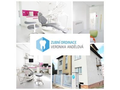 Zubní sestra/ instrumentářka